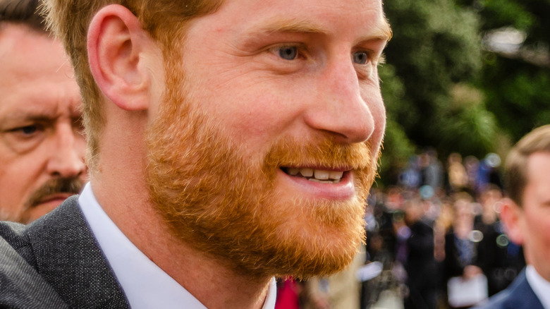 Prince Harry smiling with crowds