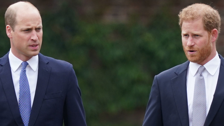 Brothers Prince William and Prince Harry at the unveiling of mother Diana's statue