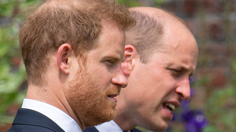 Prince Harry and Prince William at a royal event