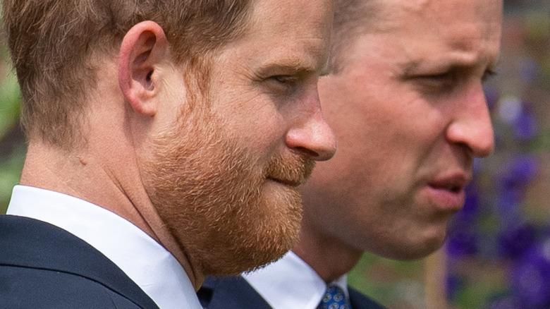 Princes William and Harry