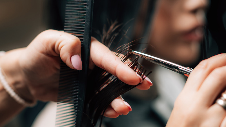 Stylist cutting woman's brunette hair