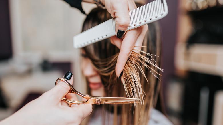 woman haircut salon styling