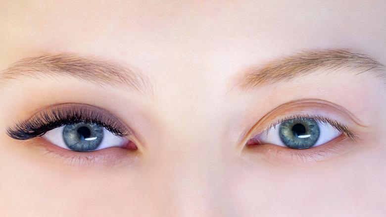 Closeup of eyelashes