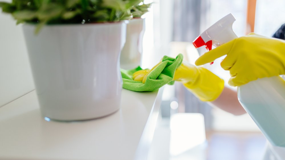 Woman cleaning a surrface