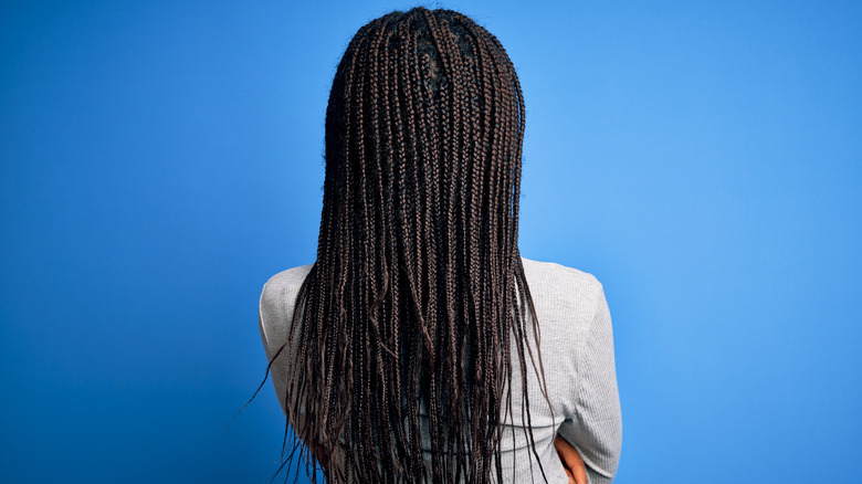 Woman's knotless braids from behind