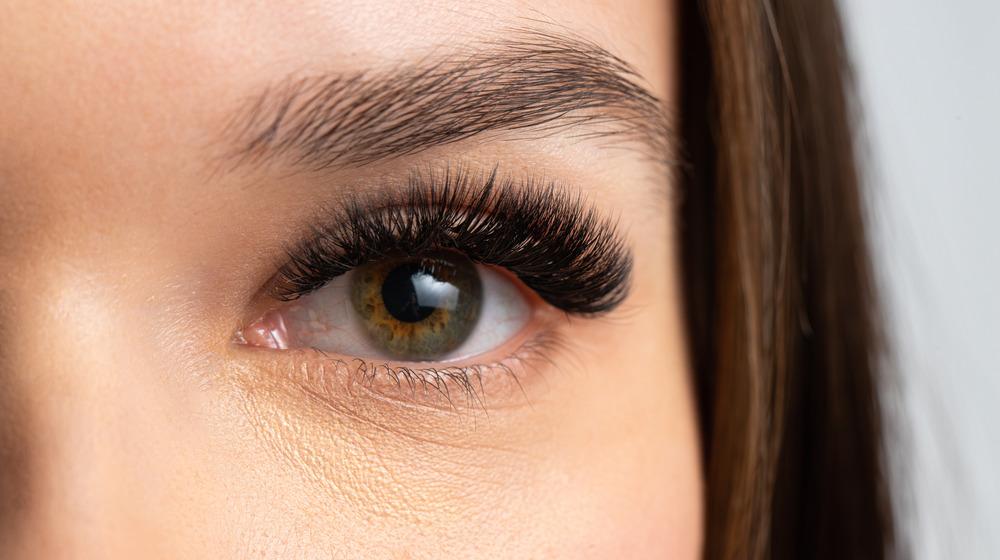 False eyelashes close-up