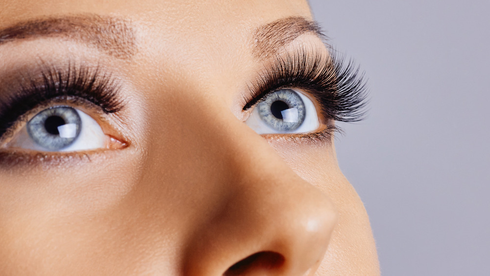Close-up of woman's full eyelashes