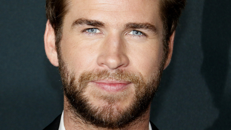 Liam Hemsworth poses at an event