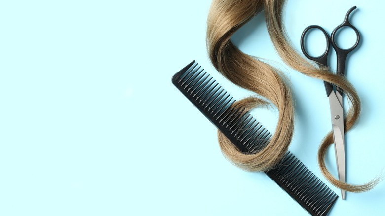 Flat lay with light brown hair, comb, and scissors