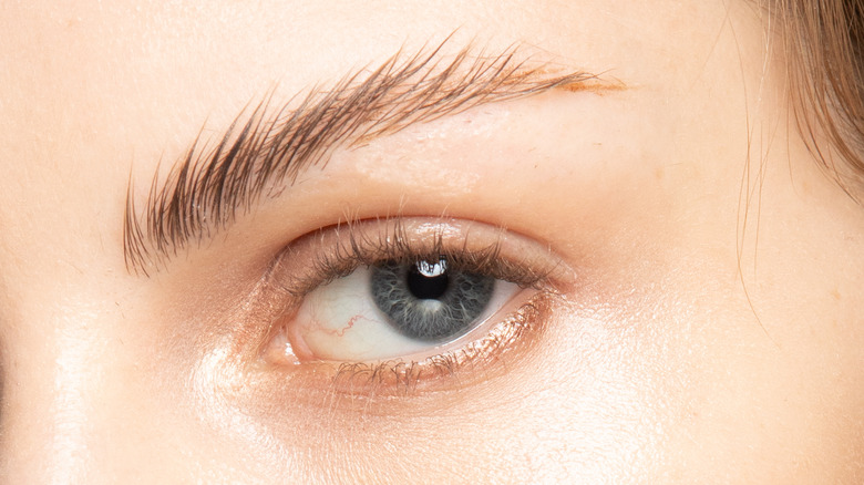 Closeup of woman's eyebrows