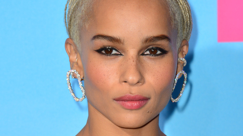 Zoe Kravitz poses at an event