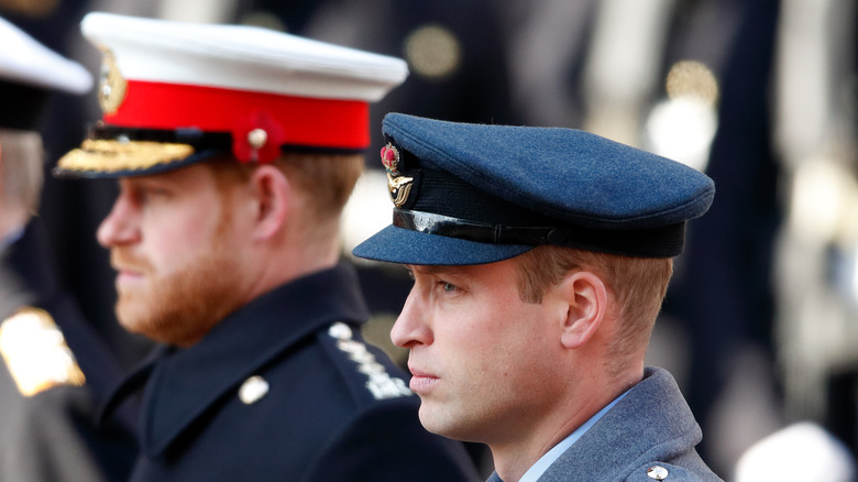 William and Harry in military dress