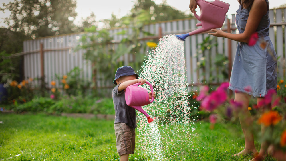 Water from watering can