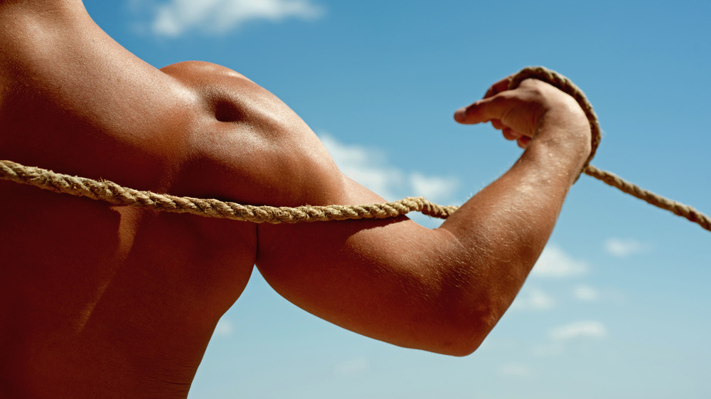 A man's muscular back