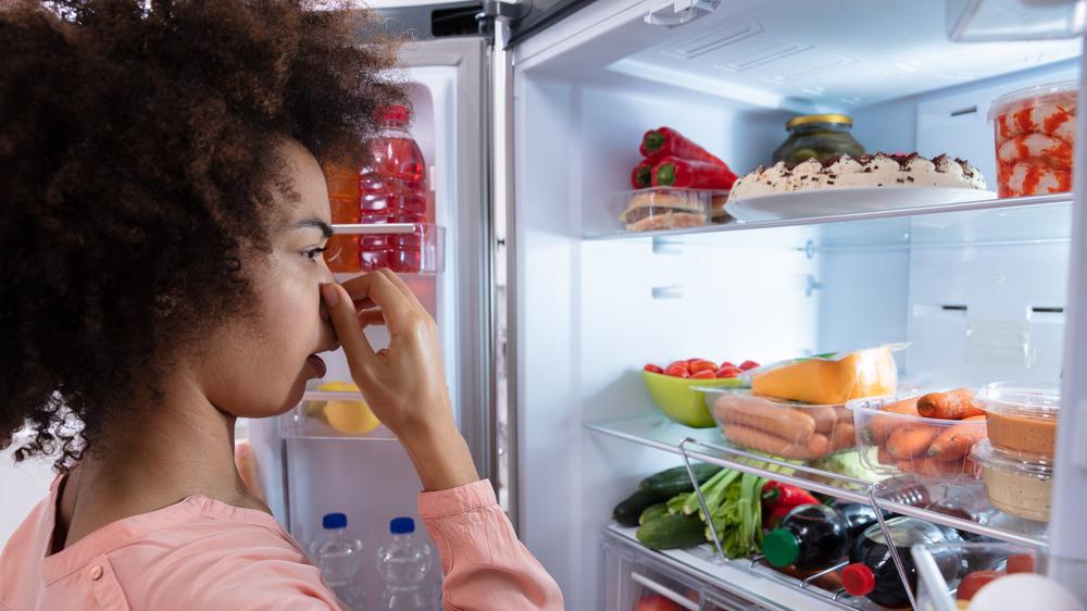 fridge smell