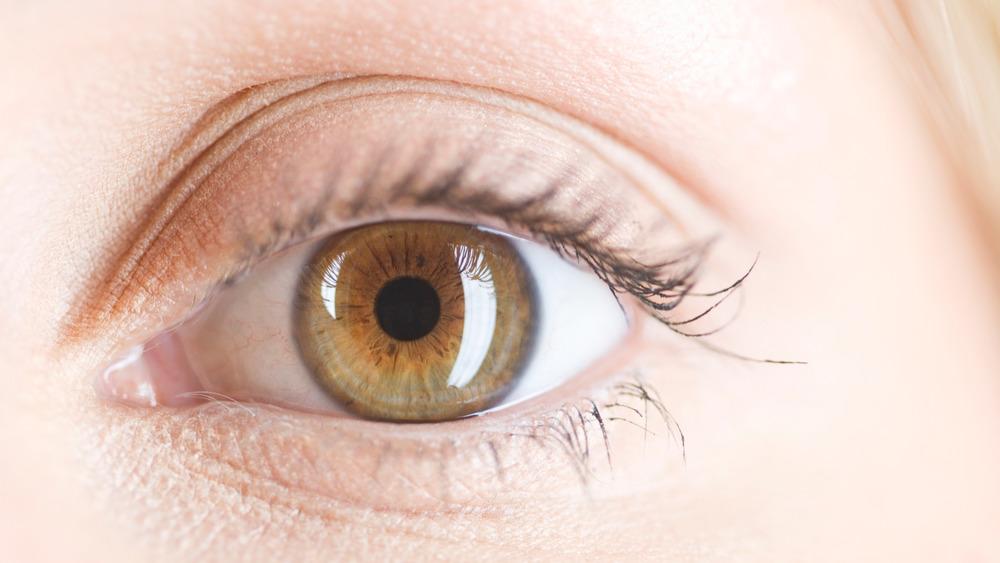 Close up of a hazel eye