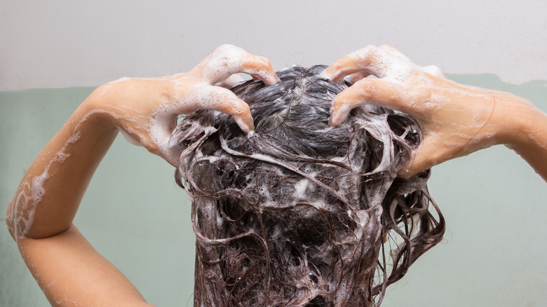 shampoo in the shower