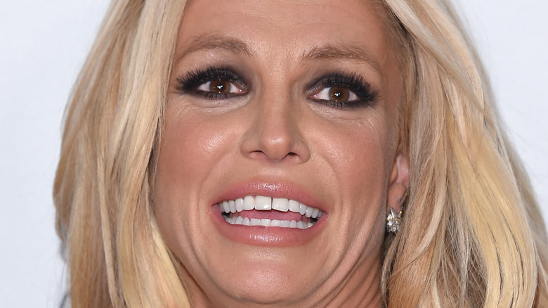 Britney Spears smiling with her hair down