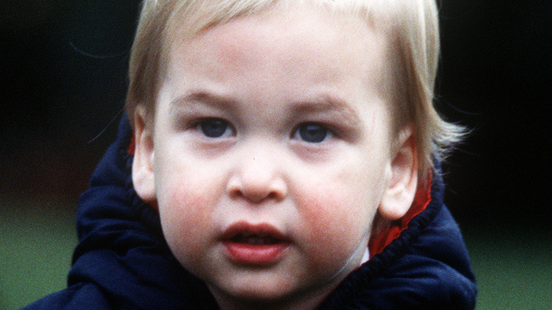 A young Prince William close-up