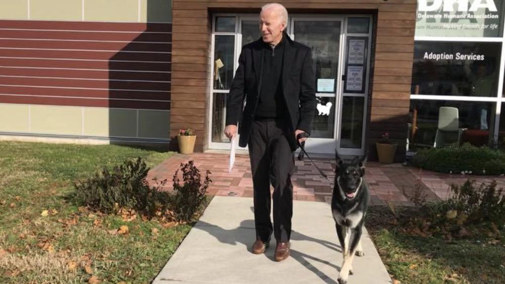 Joe Biden and his rescue dog Major