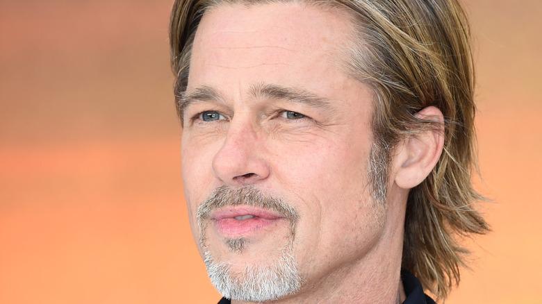 Brad Pitt posing