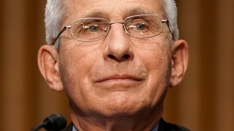 Anthony Fauci testifying before Congress