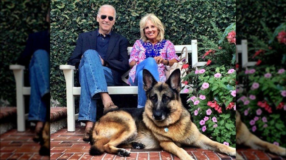 Joe and Jill Biden with Champ