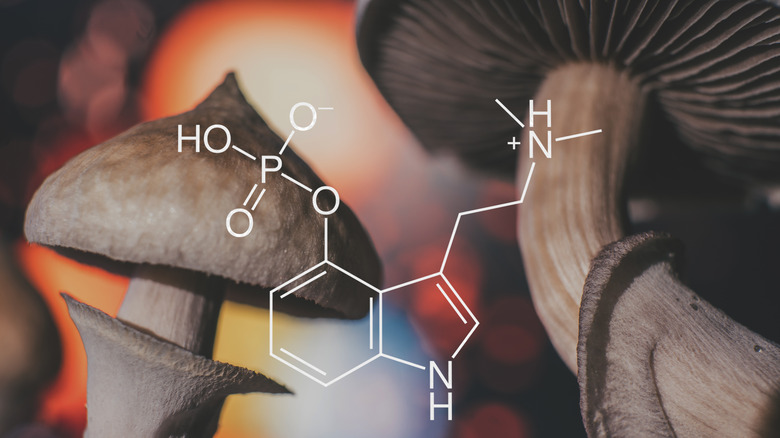 chemical formula for hallucinogenic mushrooms