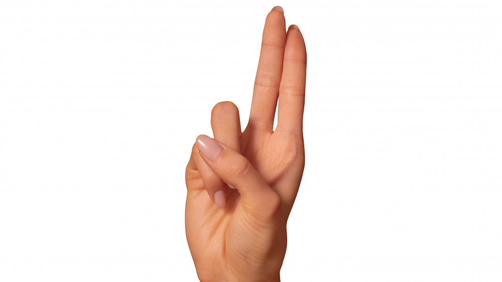 ASL sign language letter u