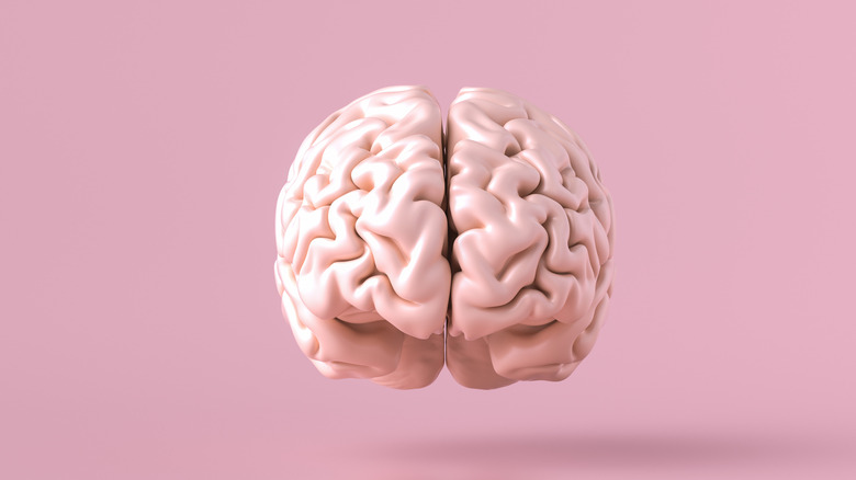 Brain floating on a pink background