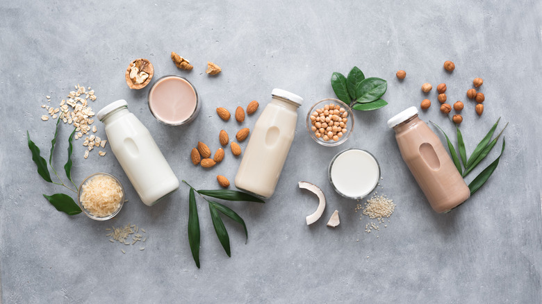 Different types of plant-based milks
