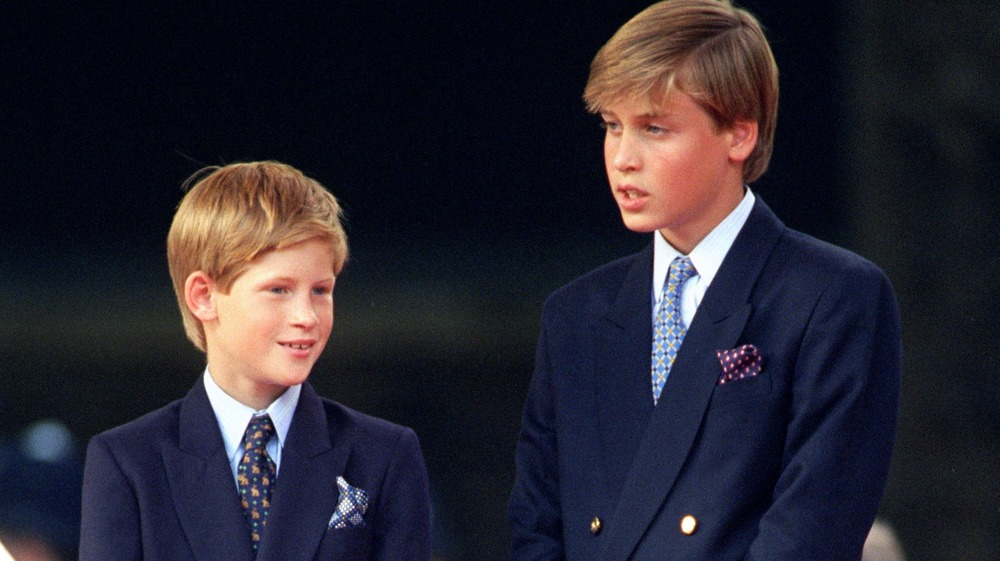 Young Princes Harry and William