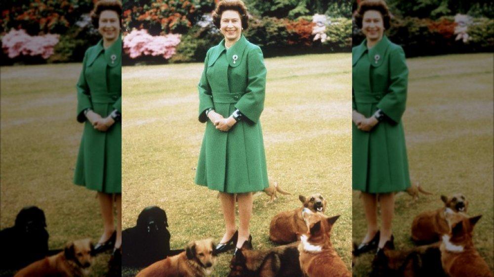 Queen Elizabeth and her corgis