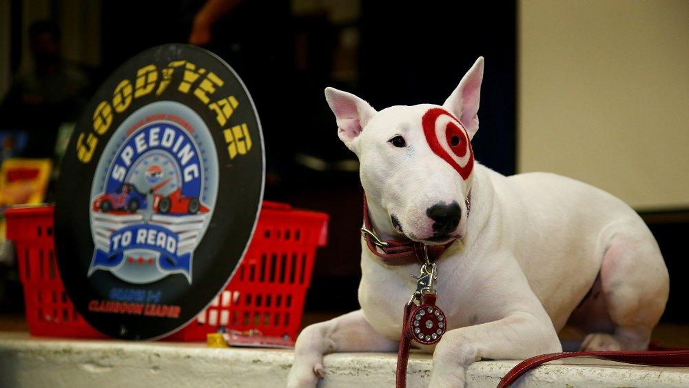 Bullseye The Dog