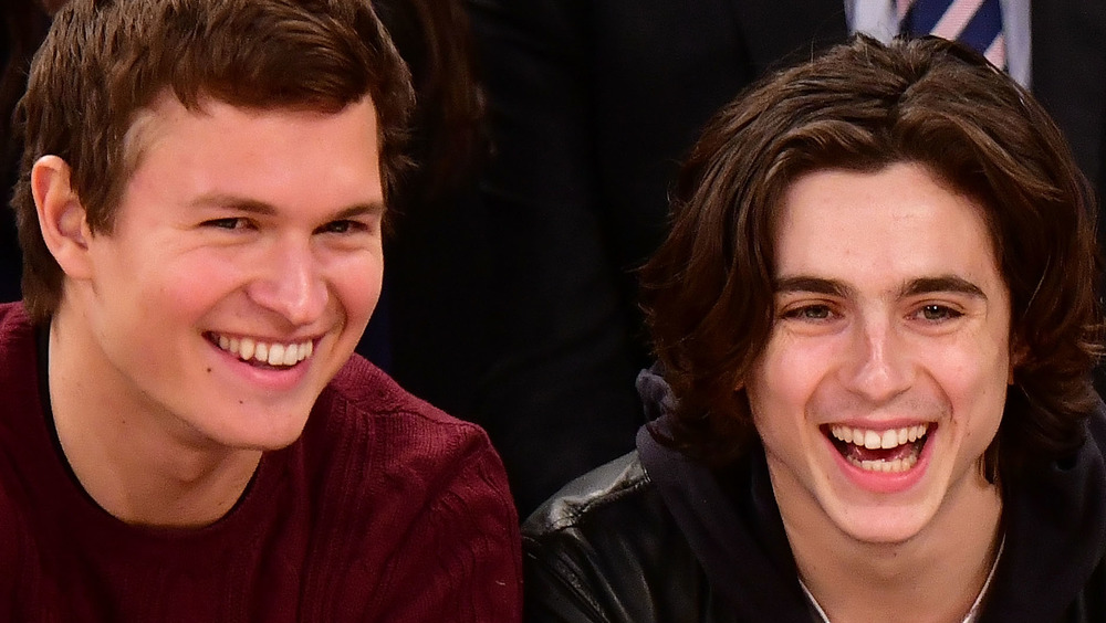 Timothee Chalamet and Ansel Elgort