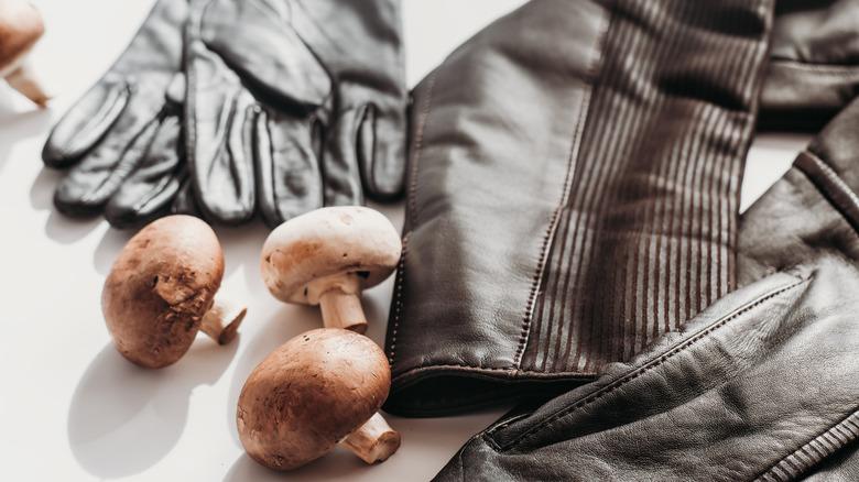 mushroom leather gloves jacket
