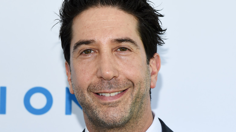 David Schwimmer poses on the red carpet.