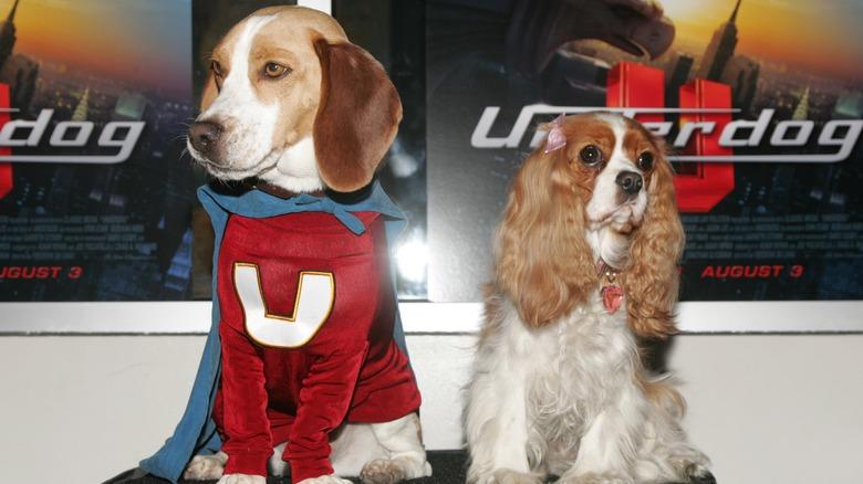 movie dogs Underdog