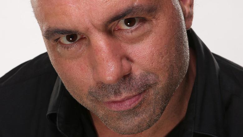Joe Rogan up close