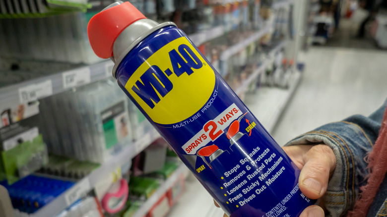 Person holding can of WD-40
