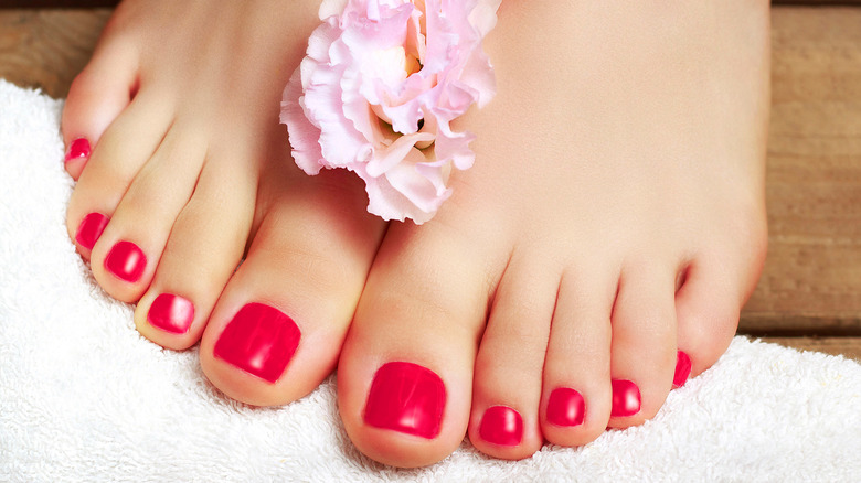 Close up of painted toenails