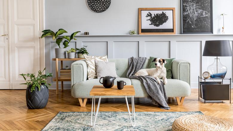 cute modern home decor