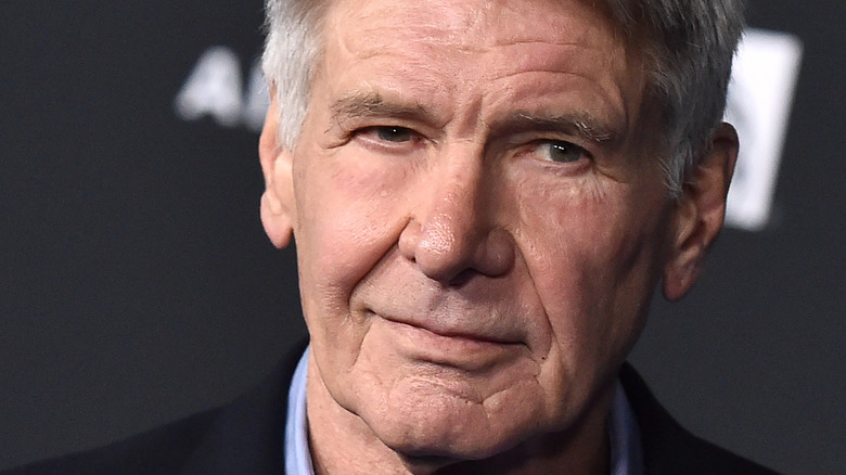 Harrison Ford smiles wryly