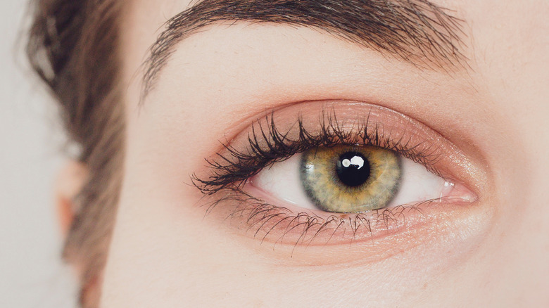 Close up picture of a woman's eye
