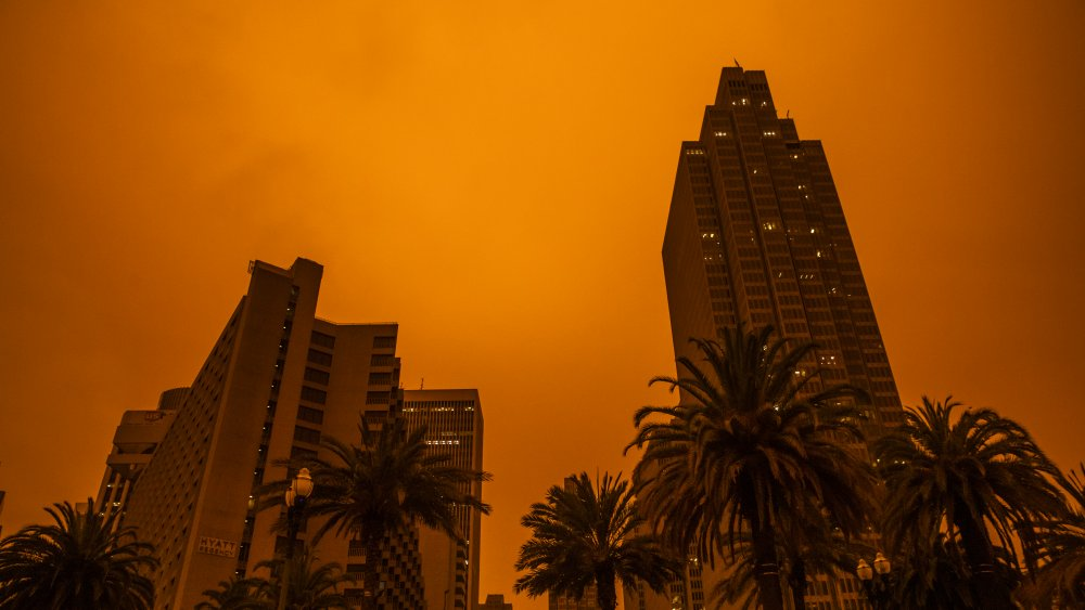 San Francisco wildfires