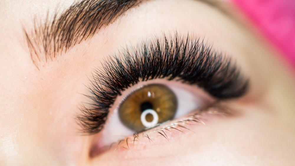 Close up of a woman's eyelashes