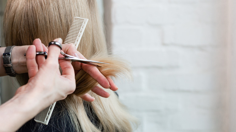 Hands using a comb and scissors to cut hair