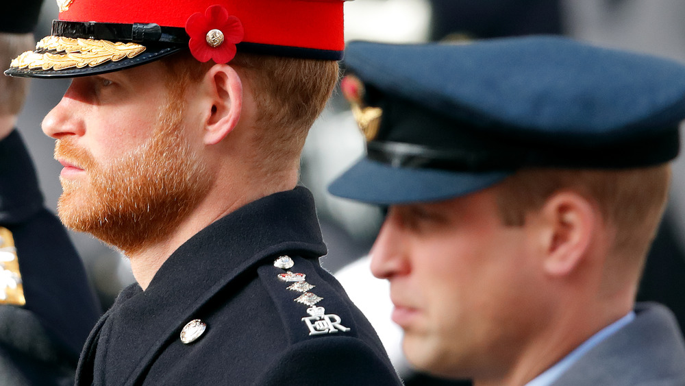 Prince William and Prince Harry at Remembrance Day ceremony