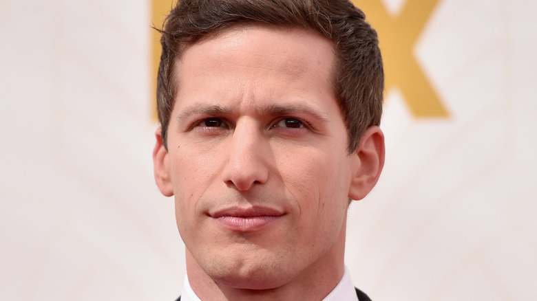 Andy Samberg poses on the red carpet