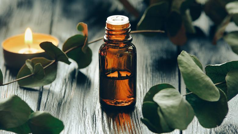 Bottle of eucalyptus oil on a table